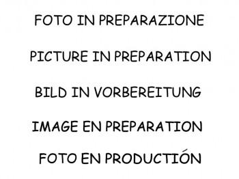 Ragazzon Alfa MiTo Sportkatalysator und Partikefilterersatz  1.3 JTDM 95 PS 2016 -